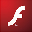 flash websites Services